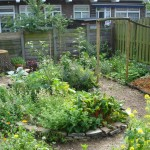 De achtertuin nu, aangelegd in februari 2012