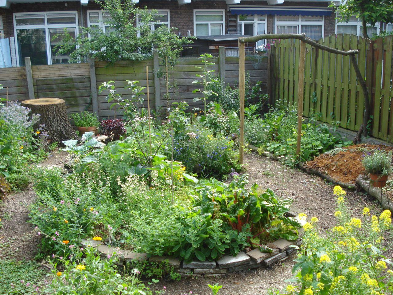 1b achtertuin den haag roos goes green for Tuinontwerp eetbare tuin