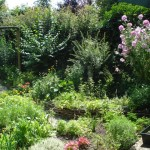 De tuin in volle bloei