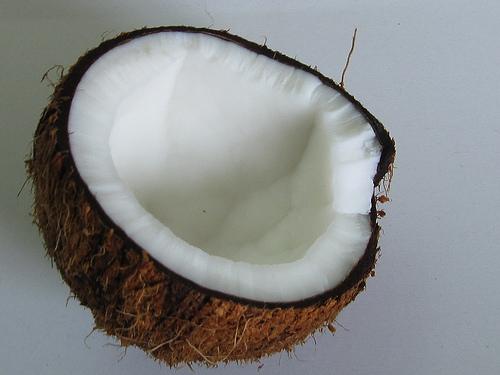 kokosvet de tuinen