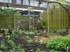 Tuinieren Op Balkon : Goede ideeën voor je tuin of balkon hetkanwel