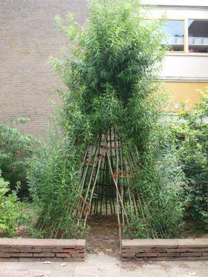 3 goede ideeën voor je tuin of balkon
