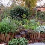 De tuin in de herfst